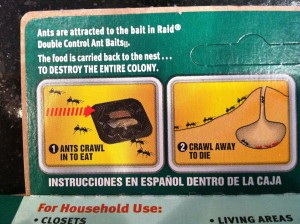So I had ants. And I don't like ants. So I bought traps to kill ants. But then I got home and read the directions and these diagrams paired with the dramatic CAPSLOCK made me feel a little guilty. See, the food is carried back to the nest...wait for it...TO DESTROY THE ENTIRE COLONY! I mean, come on Raid. Is that necessary?